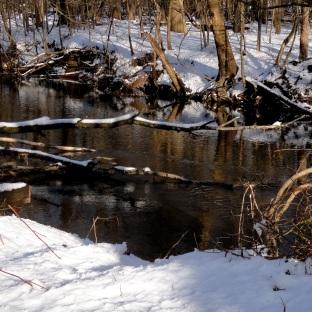 190304 Saddle River 3