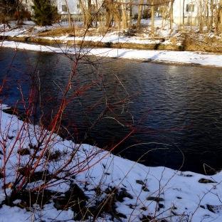 190304 Saddle River 4