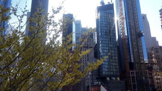 190318 Manhattan FiDi 8