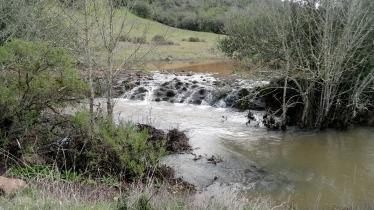 190214 Flooded Annadel 5