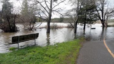 190214 Flooded Annadel 6