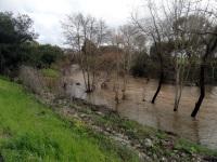 190214 Santa Rosa Creek