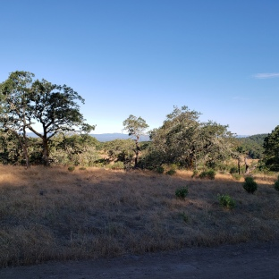 190716 Sugarloaf seen from Annadel