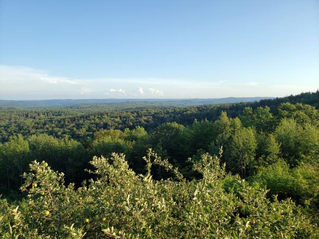 Vermont Roadside View 1