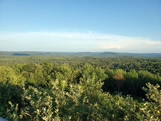 Vermont Roadside View 2