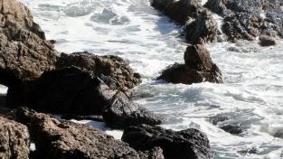 Surf on the Rocks