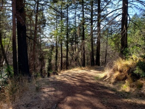 191005 Gunsight Rock Trail 2