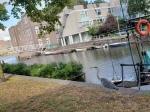 190905 Sudden Heron on Canal1