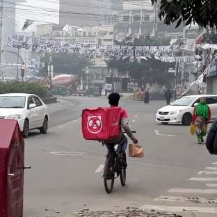 Food Panda Driver & Campaign Signs Gulshan