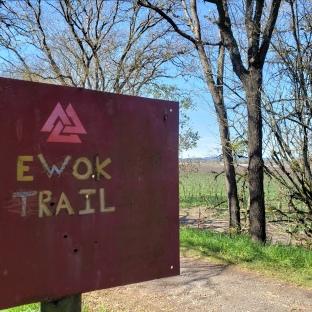 Ewok Trail Sign