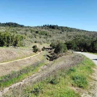 Spring Creek-Canyon Trail