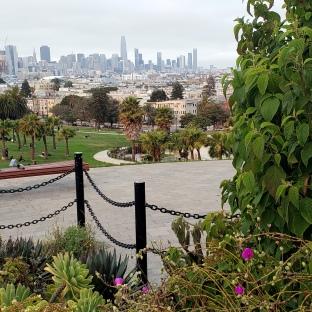 Garden & Dolores Park Skyline
