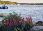 Lakefront Garden 1
