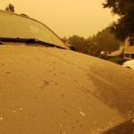 20200928 Ash Fall on CarHood