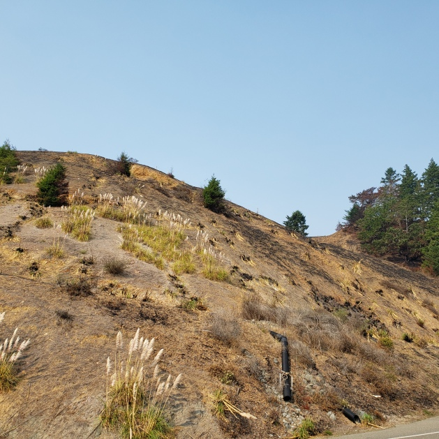 20201002 Rte 1 Meyers Fire 3