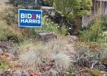 20201010 Biden Harris