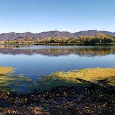 20201018 Mayacamas & Hood Mtn from Spring Lake 1
