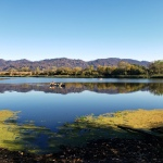20201018 Mayacamas & Hood Mtn from Spring Lake2