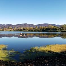 20201018 Mayacamas & Hood Mtn from Spring Lake 2