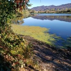 20201018 Mayacamas & Hood Mtn from Spring Lake 3