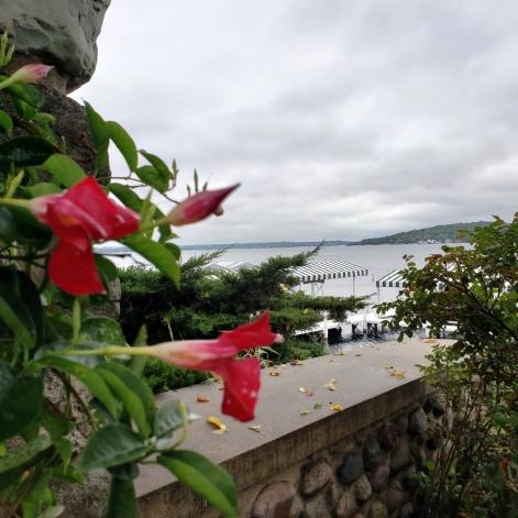 Flowers & Geneva Lake