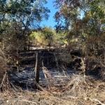 North-Annadell Post-Burn 20201021.7