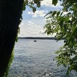 On the Lake Path6