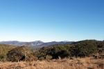 20201016 Mt St Helena & Mayacamas fromCanyon