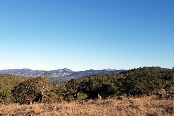 20201016 Mt St Helena & Mayacamas from Canyon