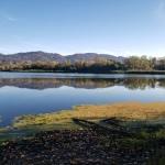 20201022S Spring Lake & FlyingSwans