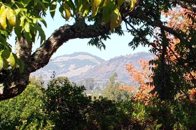 20201101 Mayacamas Burn from Oakmont 1