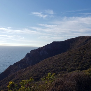 Coast Trail Looking North