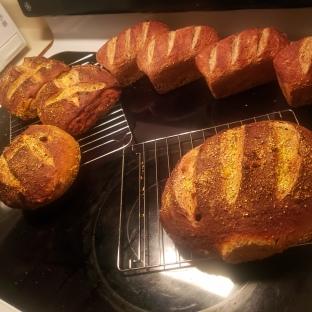 Sourdough Zucchini & Nine-Grain Loaves