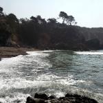 Stillwater Waves