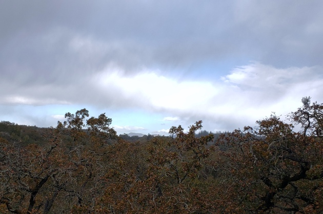 20201108 Mt St Helena Through Squall