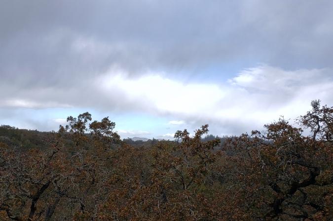 20201108 Mt St Helena Through Squall