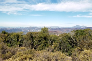 20201114 Mt St Helena from Annadel 1