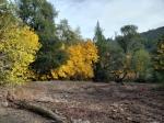 20201121 Sugarloaf – Autumn Color at BurnLine