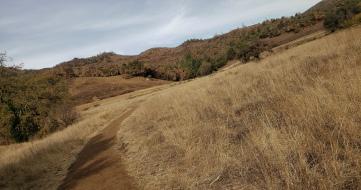 20201121 Sugarloaf - Bald Mtn & Meadow Trail