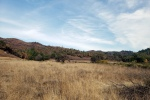 20201121 Sugarloaf – SE ridge line frommeadow