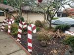 Candycanes Ornaments & Perhaps aMonkey