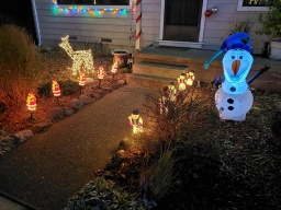 Check Out the Pathway Lights