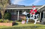 Cowborne Santa