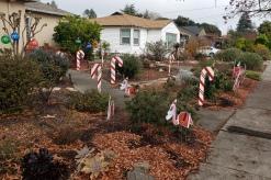 Flamingos Candy Canes & Tree Ornaments