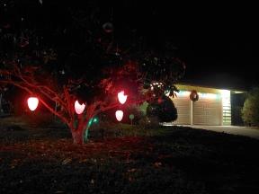 Gumdrop Tree Lights