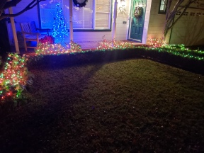 Hedge Lights & Wreath