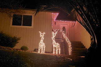Lit Deer & Porch Accent Lights