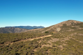 Mt Tam from Miwok Trail