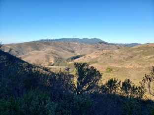 Mt Tam from Wolf Ridge 2