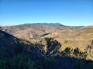 Mt Tam from Wolf Ridge 2